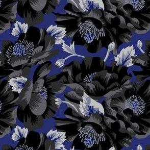 Mount Cook Lily - Blue/Black