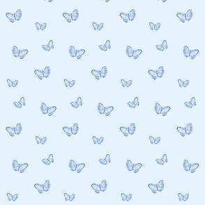 Butterflies (blue)