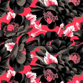Mount Cook Lily - Pink/Black