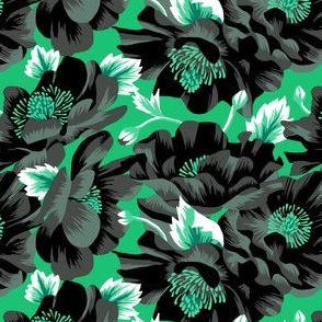 Mount Cook Lily - Mint/Black