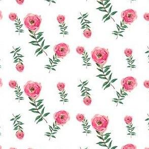 Red Roses Garden White