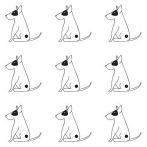 BooBoo Bull Terrier