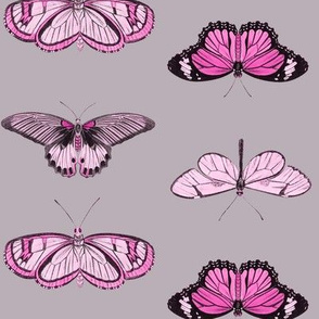 Butterflies - 2 directional repeat Pinks & Black on Brown