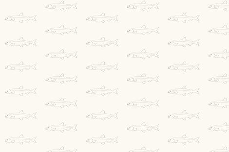 Rfish.ai_shop_preview