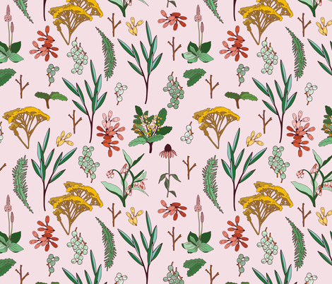 herbal_study_pink fabric by holli_zollinger on Spoonflower - custom fabric