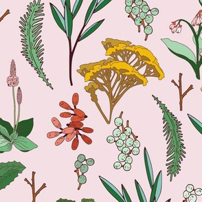 herbal_study_pink