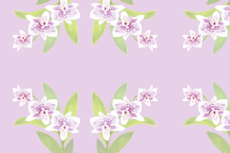 Rpillow-20-light-orchids-lavender_shop_preview
