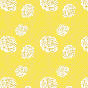 just roses - white/gold/lemon/blush