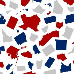 United States Scatter (White)