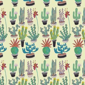 Cacti light