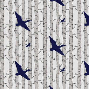Birch flying ducks