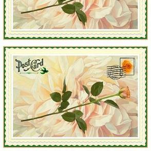 Vintage Stem Rose Postal