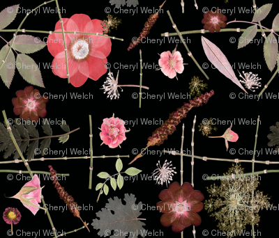 Pink Roses Anemones