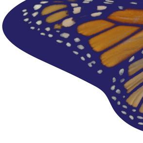 monarch-adult-child_capes-54x72