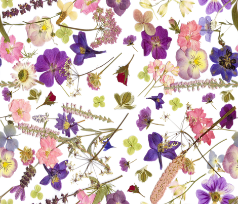 Pink meadow larger  fabric by mypetalpress on Spoonflower - custom fabric
