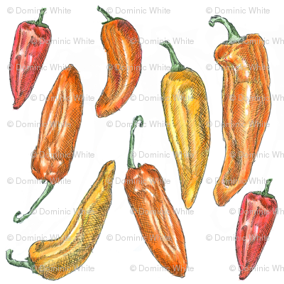 Illustrated Sweet Peppers
