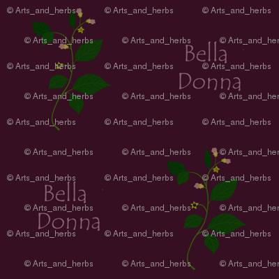 Bella Donna (dark)