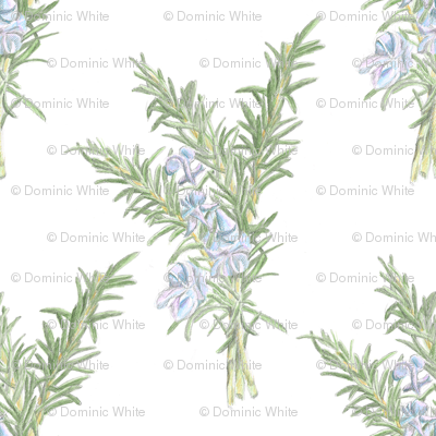 Flowering_rosemary_spoonflower_preview