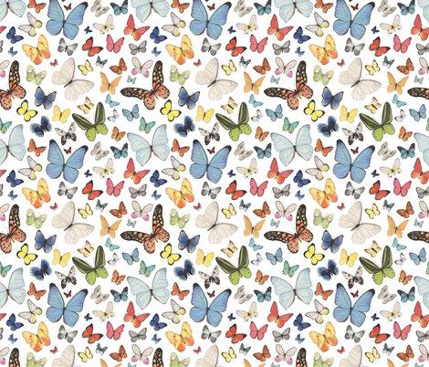 Rbutterflies_pattern_2_shop_preview