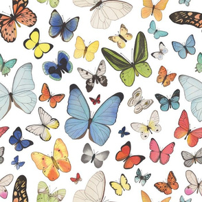 Watercolor Butterflies