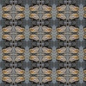 My_bee