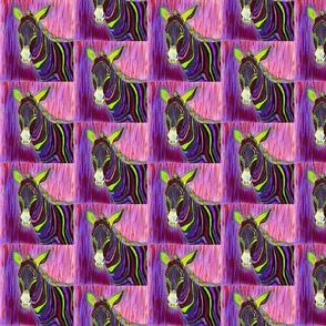 Altered_Zebra