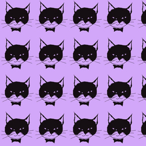 Black Cat on Purple