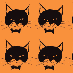 Black Cat on Orange