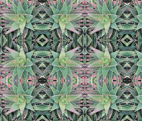 Garden of Aloes fabric by elise_camp on Spoonflower - custom fabric