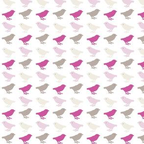 songbirds - magenta