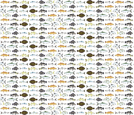 Florida Inshore Fishes 2 row fabric by combatfish on Spoonflower - custom fabric