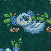 koalas forest