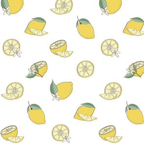 Lemon Fabric Design White Background