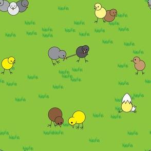 Chick Fabric