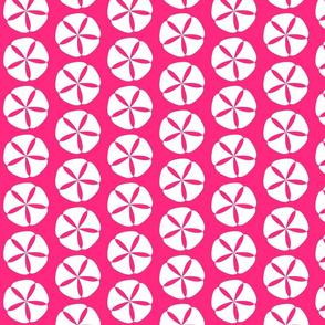 White Sand Dollar Pink