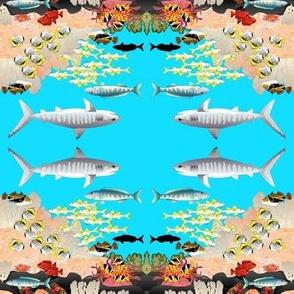 Hawaiian Reef Scene Mirrored