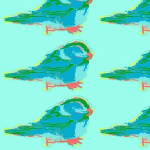 Chickadee Sky Blue