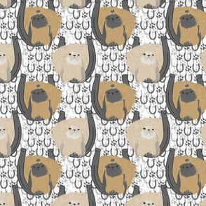 Pekingese horseshoe portraits