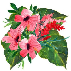 Tropical Hibiscus Bunch