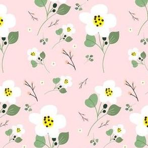 Sweet Daisy - Pink