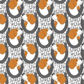 Beagle horseshoe portraits