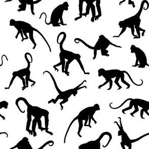 Monkeys - Small