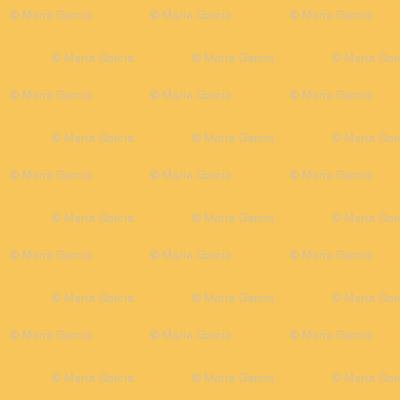 Mimosa Orange Solid for Mid-Century