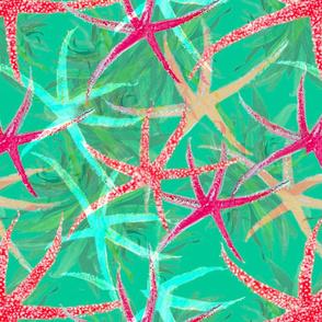 Vibrant Starfish