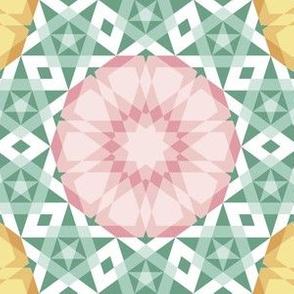 05262278 : UA5 V* : spring rose