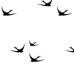 Soaring Swallows in Black and White