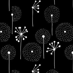 Scandinavian dandelion flower blossom garden summer fall black and white
