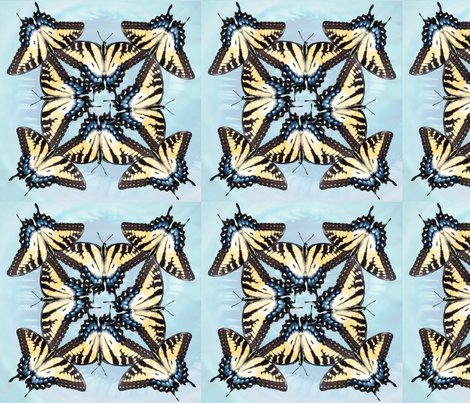 Eastern-tiger-swallowtail-blue-octet-vsmall-9x9-01_shop_preview