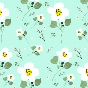 Sweet Daisy - Mint