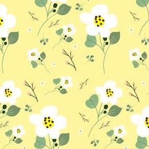 Sweet Daisy - Ivory